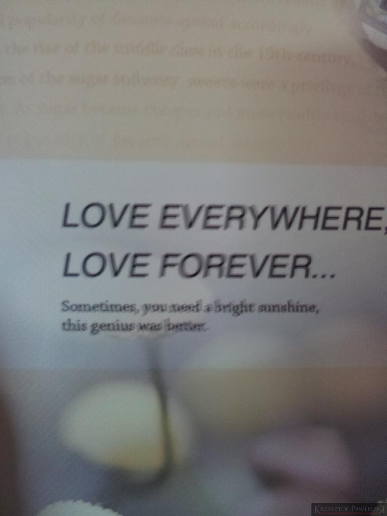 Love everywhere, love forever. Sometimes, you need a bright sunshine, this genius was better. Kochaj wszędzie, kochaj na zawsze. Czasami, potrzebne jest jasne słońce, ten geniusz był lepszy